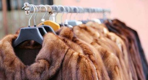 California Bans Fur Products