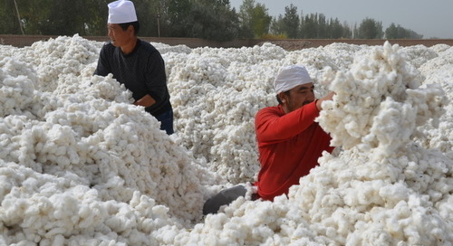 US Senate bill addresses China forced labour | Labels & Legislation News