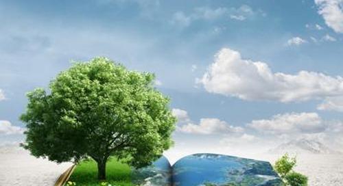 Sostenibilità: Istat, bilanci poco diffusi, li redige meno del 4% delle imprese