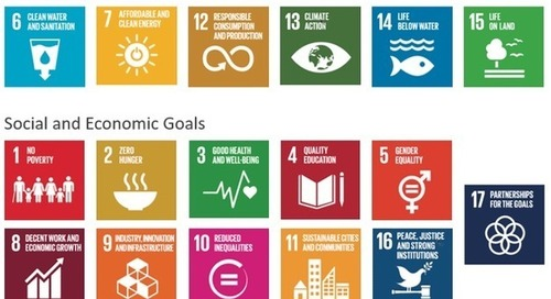 7 Ways Companies Can Contribute to the SDGs