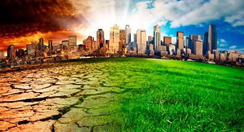 Más de 150 corporaciones instan a los líderes mundiales a una recuperación post COVID-19 neutra en carbono