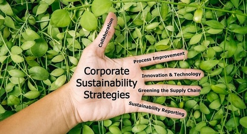 How Ecovadis and Bain Aim to Make Supply Chains More Sustainable