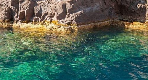 Les aires marines protégées: le mirage de la préservation des océans