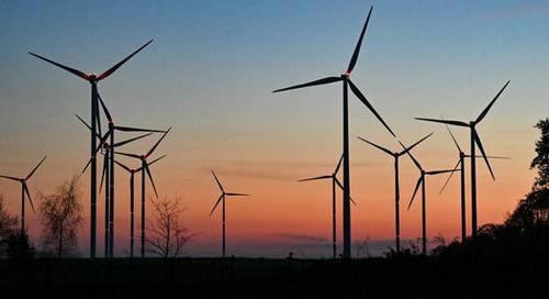 Klimaschutz: Warum nachhaltige Unternehmen besser wirtschaften