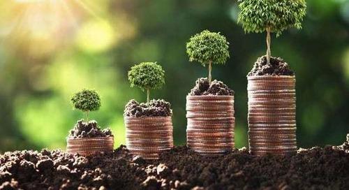 PMI e sostenibilità, incentivi per spingere i rendiconti green