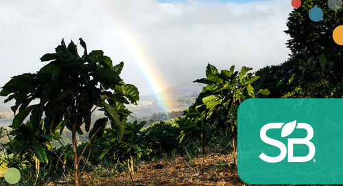 Trending: Beverage Giants Ensuring Their Libations Are Sustainable, Down to the Roots