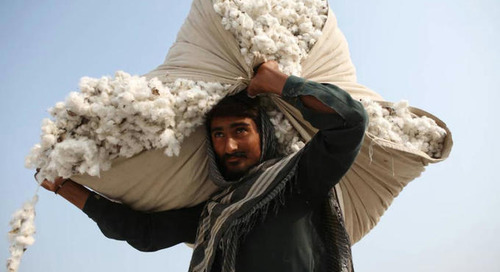 Australian cotton traceability and sustainability