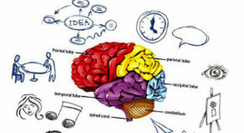 Professional Development Webinar Series: Whole Brain Instruction With a Kinesthetic Approach