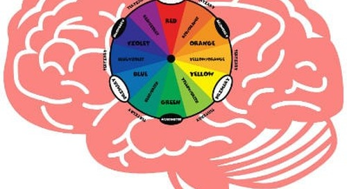 The Neuroscience of Color