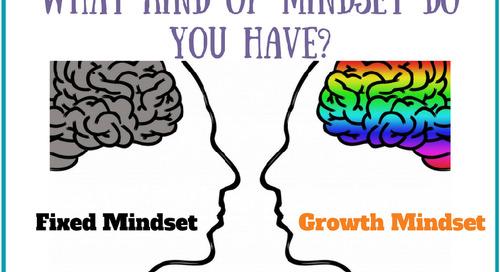 Professional Development Webinar: Growth vs Fixed Mindset