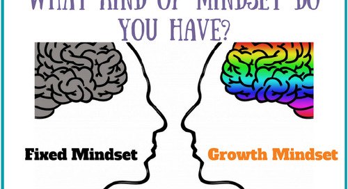 Professional Development Webinar: Growth vs Fixed Mindset
