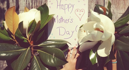 Mother's Day Specials, Offers + Discounts Guide in Jersey City