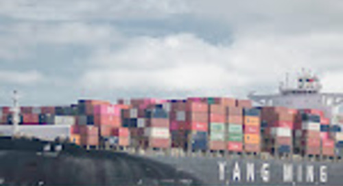 Port Report: Carriers and shippers need to end 'addiction to cheapness' in ocean freight - FreightWaves