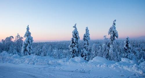 Winter Adventure in Lapland – Lights, Speed, Action