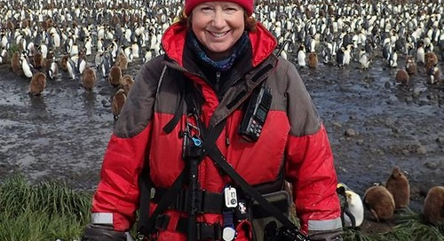 One on One with Polar Photographer Sue Forbes