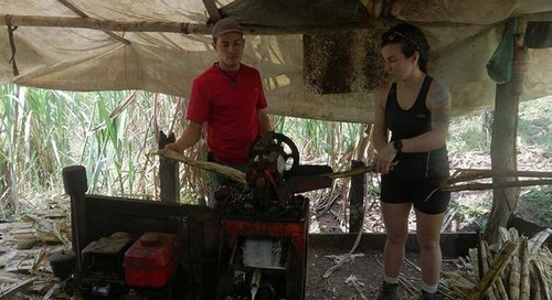 Off The Tourist Track: Costa Rica's secret experiences