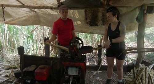Running Wild: Sharing Costa Rica's hidden gems