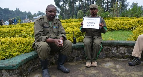 Visual Adventure: Gorilla trekking in Rwanda