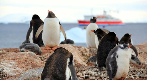 To the South: Following family footsteps to Antarctica