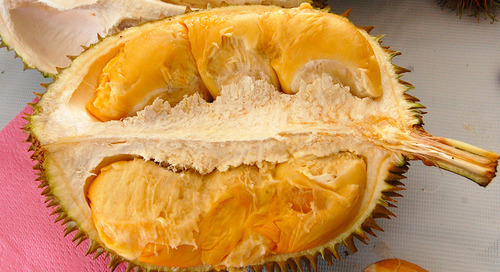 Thailand's fugitive fruits