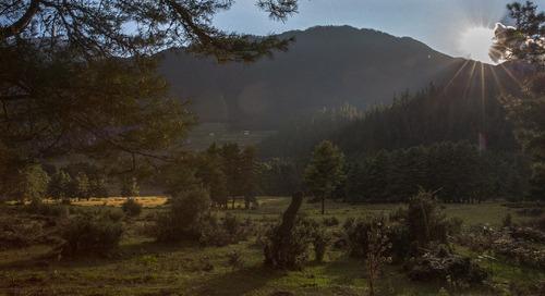 A culinary journey to Bhutan