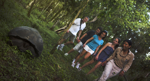 Can animals and people live happily in the Galápagos?