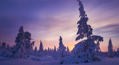 Yuletide joy in Norway
