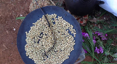 Ethiopia: The past, present, and future of coffee