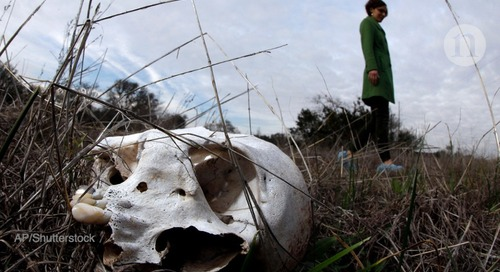 EXCLUSIVE: UK to open first 'body farm' for forensic research