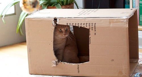 5 major risks when using free moving boxes