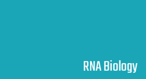 The extended AT-hook is a novel RNA binding motif