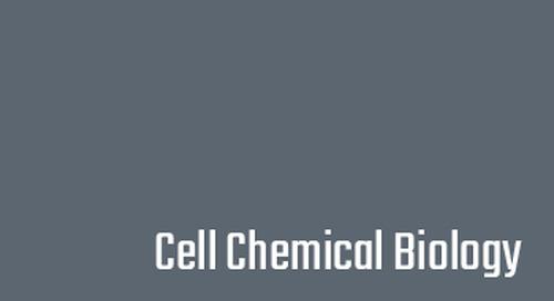 Basis of mutual domain inhibition in a bacterial response regulator