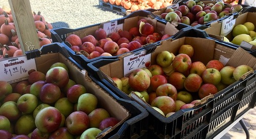 Produce Pete: All About Apples