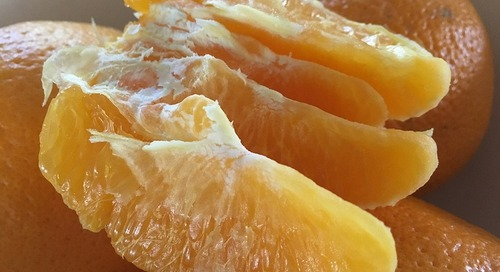 Produce Pete: Navel Oranges, the Season's Main Squeeze