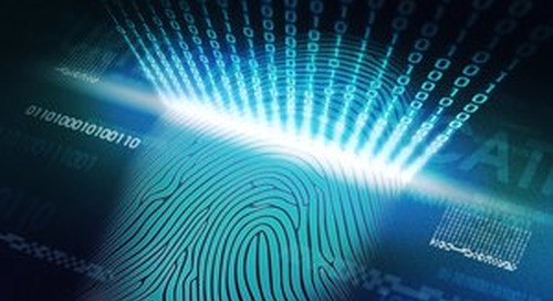 The smartphone as a mobile identity device