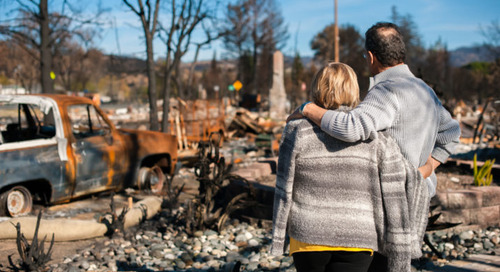 A Model for Wildfire Disaster Relief