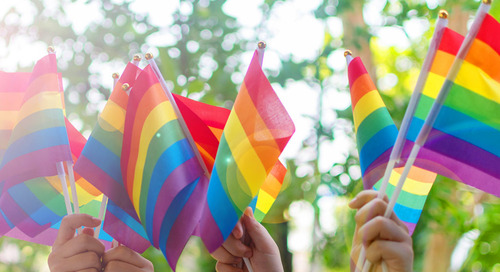 LGBT Rights Decision: What it Means and What to Do