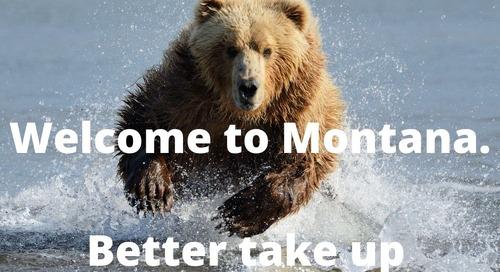 Distinctly Montana