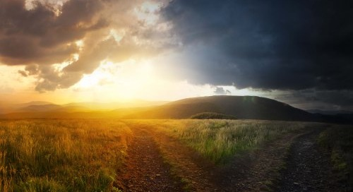 Two paths: one barren; one filled with Light