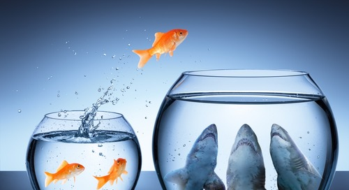 7 Reasons Why Business Transformations Fail (Even With a Change Management Plan)