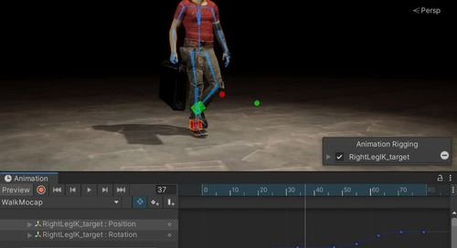 Animation Rigging: Bidirectional motion transfer