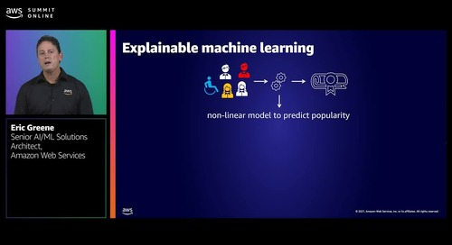 Bias detection and explainability in AI and machine learning applications