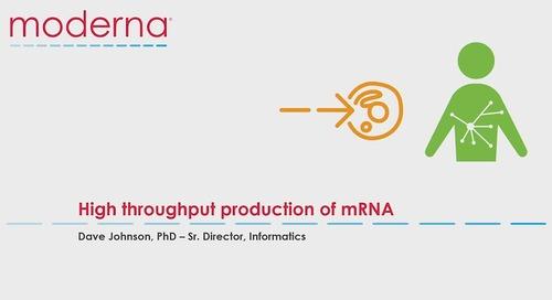High throughput production of mRNA
