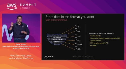 Next-Gen Data Lakes and Analytics Platforms