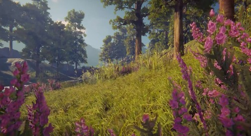 New Authoring Workflows for believable Terrain and Vegetation