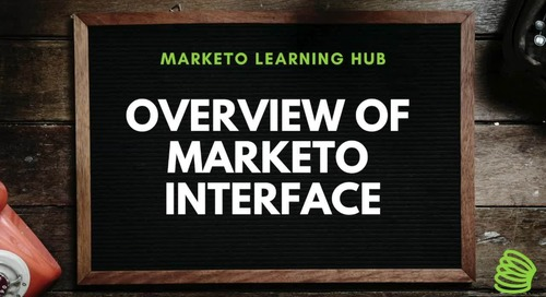 Overview of Marketo Interface