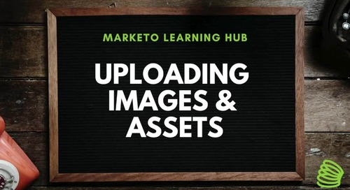 Uploading Assets
