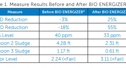 BIO ENERGIZER® Reduces Sludge at Sugar Refinery Wastewater Treatment Lagoons
