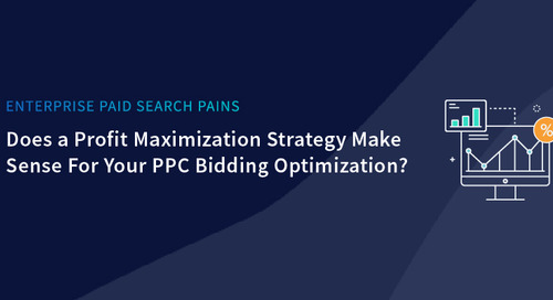 "Driving ""Profit Maximization"" in your PPC Bid Optimization Strategy"