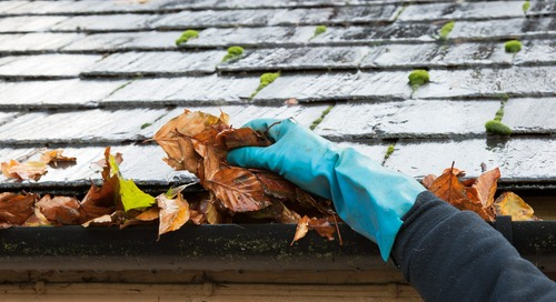 Spring It On: 7 Must-Do Home Maintenance Tasks to Tackle This Season